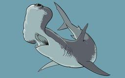 El tiburón de hammerhead Foto de archivo libre de regalías