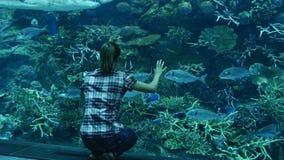 El tiburón flota sobre la chica joven almacen de metraje de vídeo