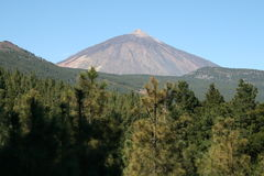 Free El Tiede 1 Royalty Free Stock Images - 5241979