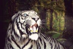 El tigre blanco bosteza en el fondo verde del follaje foto de archivo libre de regalías