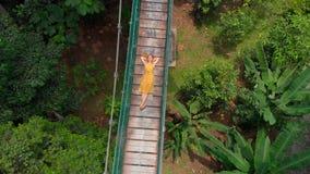 El tiro aéreo de una mujer joven pone en puente colgante sobre las selvas Viaje al concepto de Asia sudoriental almacen de video