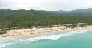 El tiro aéreo panorámico del bosque verde de la palmera y el océano con turquesa riegan Concepto exótico de las vacaciones tiro 4 metrajes