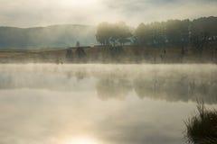 El tiro brumoso de la madrugada de árboles reflejó en el agua tranquila de un lago Imagen de archivo libre de regalías