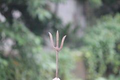 El tirsul Foto de archivo libre de regalías