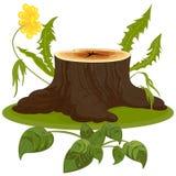 El tocón de árbol marrón grande en prado floreciente Foto de archivo
