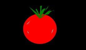 El tomate Foto de archivo libre de regalías