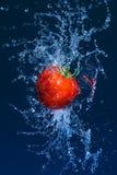 El tomate maduro que vuela en agua salpica fotografía de archivo