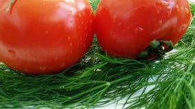 el tomate rojo del eneldo mojado en la cocina blanca del sabor del fondo cae salpicar la comida sana, preparación metrajes