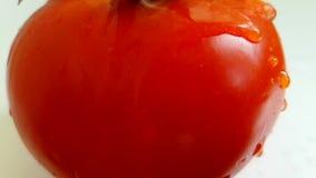 El tomate vierte jugoso dinámico a cámara lenta del agua metrajes