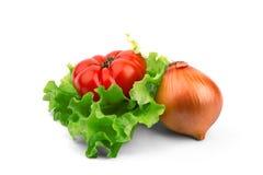 El tomate y la cebolla mienten en una hoja del fettuci Fotos de archivo libres de regalías