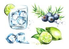 El tonik de la ginebra fijó con los cubos de hielo, la cal y las bayas de enebro Ejemplo dibujado mano de la acuarela aislado en  stock de ilustración