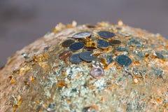 El top de gloden la piedra santa en el loknimit de la llamada del budismo que se pega por c Fotografía de archivo libre de regalías