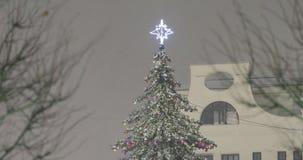 El top de la picea de la Navidad almacen de metraje de vídeo
