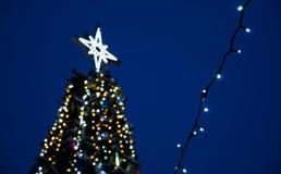 El top del árbol de navidad, contra la perspectiva del cielo nocturno, Año Nuevo del humor de los días de fiesta ligeros festivos foto de archivo