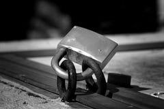 El tornillo Fotografía de archivo libre de regalías