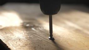 El trabajador aprieta el tornillo con un destornillador Torsi?n del destornillador de los tornillos en tablero de madera carpinte almacen de video