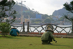 El trabajador de la calle está levantando las malas hierbas del césped Imagen de archivo libre de regalías