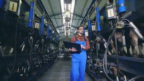El trabajador de sexo masculino comprueba el equipo en una instalación de ordeno, caminando en un granero almacen de video