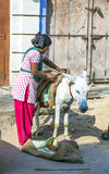 El trabajador indio ensilla el burro Foto de archivo