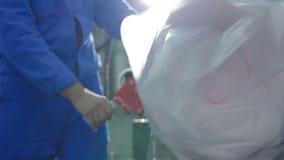 El trabajador toma el rollo de goma de paquetes del transportador con la cinta almacen de metraje de vídeo