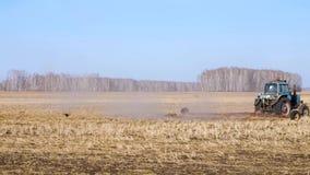 El trabajo agr?cola sobre un granjero del tractor siembra el grano Los p?jaros hambrientos est?n volando detr?s del tractor, y co almacen de metraje de vídeo