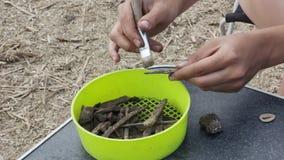 El trabajo del arqueólogo en la limpieza primaria manual del hallazgo almacen de metraje de vídeo