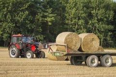 El tractor carga las balas de heno sobre el remolque Maquinaria agrícola en el campo después de cosechar cosechas de grano fotografía de archivo