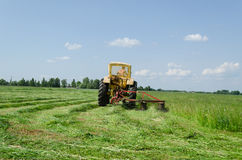 El tractor hace vuelta aguda y las hojas cortan los penachos de la hierba Foto de archivo