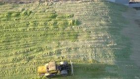 El tractor superior del forraje de la visión pega ensilaje en hoyo el día soleado almacen de metraje de vídeo