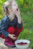 El traer rubio trenzado de la niña precario y goce de comer las frambuesas maduras del jardín foto de archivo