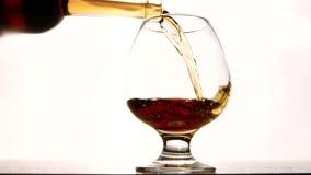 El trago se está satisfaciendo con el coñac costoso en el restaurante de lujo para la huésped del VIP almacen de metraje de vídeo