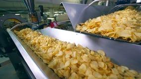 El transportador moderno de la fábrica mueve porciones de patatas a la inglesa de patata almacen de metraje de vídeo