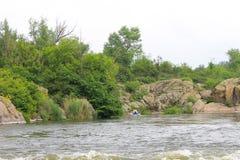 El transportar en balsa en el río meridional del insecto Fotografía de archivo libre de regalías