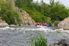 El transportar en balsa en el río meridional del insecto Imagen de archivo