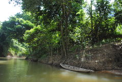 El transportar en balsa a través de la selva - barco viejo Foto de archivo libre de regalías