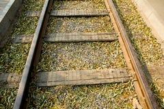 El tren, Fotografía de archivo