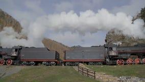 El tren se está moviendo sobre campo el día soleado almacen de metraje de vídeo
