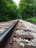 El tren sigue el puente Imágenes de archivo libres de regalías