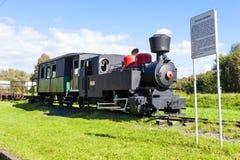 El tren viejo del motor de vapor Foto de archivo