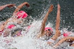 El Triathlon europeo Sprint del ITU de Crémona ahueca Fotos de archivo libres de regalías