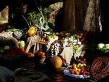 El triunfo del otoño fotografía de archivo libre de regalías