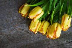 El tulipán amarillo del ramo florece en la tabla de madera vieja Imágenes de archivo libres de regalías