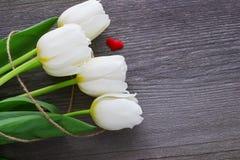 El tulipán blanco del ramo florece en la tabla de madera vieja Semana Santa madres Foto de archivo