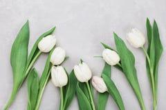 El tulipán de la primavera florece en la opinión de sobremesa de piedra gris en estilo de la endecha del plano Saludo para el día Foto de archivo