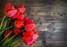 El tulip?n de la primavera florece en la opini?n superior del fondo rosado en estilo de la endecha del plano Saludo para el d?a p imagen de archivo