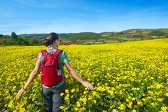 El turista de la mujer joven camina en el fondo de campos coloreados Imágenes de archivo libres de regalías