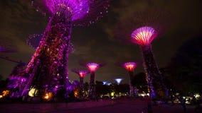 El turista no identificado visitó la demostración ligera de jardines por la bahía en la noche, Singapur almacen de metraje de vídeo