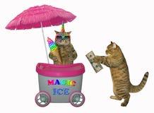 El unicornio del gato vende el helado en el quiosco 2 fotos de archivo libres de regalías
