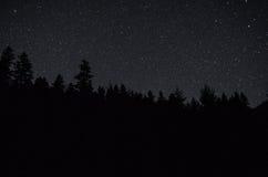 El universo sobre el bosque Fotos de archivo