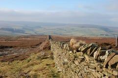 El urogallo seco de la pared de piedra amarra, Blanchland Northumberland fotos de archivo